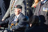 Remembrance Sunday Cenotaph March Past 2013: D28 - British Limbless Ex-Service Men's Association,. Press stand opposite the Foreign Office building, Whitehall, London SW1, London, Greater London, United Kingdom, on 10 November 2013 at 11:42, image #241