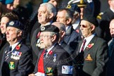 Remembrance Sunday Cenotaph March Past 2013: E2 - Royal Naval Association.. Press stand opposite the Foreign Office building, Whitehall, London SW1, London, Greater London, United Kingdom, on 10 November 2013 at 11:44, image #365