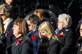 Remembrance Sunday Cenotaph March Past 2013: E30 - Association of WRENS.. Press stand opposite the Foreign Office building, Whitehall, London SW1, London, Greater London, United Kingdom, on 10 November 2013 at 11:47, image #602