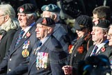 Remembrance Sunday Cenotaph March Past 2013: F2 - National Malaya & Borneo Veterans Association.. Press stand opposite the Foreign Office building, Whitehall, London SW1, London, Greater London, United Kingdom, on 10 November 2013 at 11:50, image #747