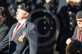 Remembrance Sunday Cenotaph March Past 2013: F2 - National Malaya & Borneo Veterans Association.. Press stand opposite the Foreign Office building, Whitehall, London SW1, London, Greater London, United Kingdom, on 10 November 2013 at 11:50, image #753