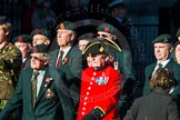 Remembrance Sunday Cenotaph March Past 2013: A11 - Royal Irish Regiment Association.. Press stand opposite the Foreign Office building, Whitehall, London SW1, London, Greater London, United Kingdom, on 10 November 2013 at 11:55, image #1096