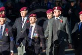 Remembrance Sunday Cenotaph March Past 2013: B22 - Airborne Engineers Association.. Press stand opposite the Foreign Office building, Whitehall, London SW1, London, Greater London, United Kingdom, on 10 November 2013 at 12:02, image #1496