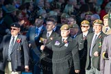 Remembrance Sunday Cenotaph March Past 2013: B29 - Royal Pioneer Corps Association.. Press stand opposite the Foreign Office building, Whitehall, London SW1, London, Greater London, United Kingdom, on 10 November 2013 at 12:03, image #1555