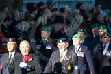 Remembrance Sunday Cenotaph March Past 2013: B37 - Intelligence Corps Association.. Press stand opposite the Foreign Office building, Whitehall, London SW1, London, Greater London, United Kingdom, on 10 November 2013 at 12:04, image #1612