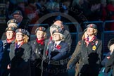 Remembrance Sunday Cenotaph March Past 2013: B39 - Queen Alexandra's Royal Army Nursing Corps Association.. Press stand opposite the Foreign Office building, Whitehall, London SW1, London, Greater London, United Kingdom, on 10 November 2013 at 12:04, image #1641