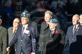 Remembrance Sunday Cenotaph March Past 2013: C11 - RAFLING Association.. Press stand opposite the Foreign Office building, Whitehall, London SW1, London, Greater London, United Kingdom, on 10 November 2013 at 12:07, image #1779