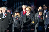 Remembrance Sunday Cenotaph March Past 2013: M40 - Lions Club International.. Press stand opposite the Foreign Office building, Whitehall, London SW1, London, Greater London, United Kingdom, on 10 November 2013 at 12:14, image #2187