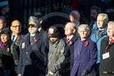 Remembrance Sunday Cenotaph March Past 2013: M40 - Lions Club International.. Press stand opposite the Foreign Office building, Whitehall, London SW1, London, Greater London, United Kingdom, on 10 November 2013 at 12:14, image #2191