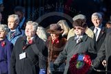 Remembrance Sunday Cenotaph March Past 2013: M41 - Rotary International.. Press stand opposite the Foreign Office building, Whitehall, London SW1, London, Greater London, United Kingdom, on 10 November 2013 at 12:14, image #2194