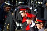 HRH Duke of Cambridge, HRH Prince Henry of Wales, HRH The Earl of Wessex, HRH The Duke of Kent.