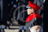 HRH The Earl of Wessex, saluting in respect after having laid his wreath at the Cenotaph.