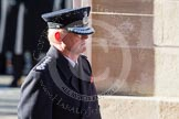 HM Inspector of Constabulary, T P Winsor, at the Cenotaph.
