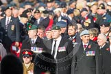 Remembrance Sunday at the Cenotaph in London 2014: The unidentified group leading one column. Press stand opposite the Foreign Office building, Whitehall, London SW1, London, Greater London, United Kingdom, on 09 November 2014 at 11:36, image #7