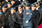 Remembrance Sunday at the Cenotaph in London 2014: Group C2 - Royal Air Force Regiment Association. Press stand opposite the Foreign Office building, Whitehall, London SW1, London, Greater London, United Kingdom, on 09 November 2014 at 11:38, image #47