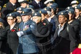 Remembrance Sunday at the Cenotaph in London 2014: Group C2 - Royal Air Force Regiment Association. Press stand opposite the Foreign Office building, Whitehall, London SW1, London, Greater London, United Kingdom, on 09 November 2014 at 11:38, image #48