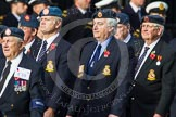 Remembrance Sunday at the Cenotaph in London 2014: Group C10 - Royal Air Force & Defence Fire Services Association. Press stand opposite the Foreign Office building, Whitehall, London SW1, London, Greater London, United Kingdom, on 09 November 2014 at 11:39, image #129