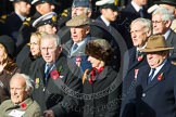 Remembrance Sunday at the Cenotaph in London 2014: Group C17 - Blenheim Society. Press stand opposite the Foreign Office building, Whitehall, London SW1, London, Greater London, United Kingdom, on 09 November 2014 at 11:40, image #154