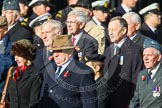 Remembrance Sunday at the Cenotaph in London 2014: Group C17 - Blenheim Society. Press stand opposite the Foreign Office building, Whitehall, London SW1, London, Greater London, United Kingdom, on 09 November 2014 at 11:40, image #155
