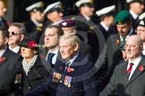 Remembrance Sunday at the Cenotaph in London 2014: Group D6 - TRBL Ex-Service Members. Press stand opposite the Foreign Office building, Whitehall, London SW1, London, Greater London, United Kingdom, on 09 November 2014 at 11:44, image #315