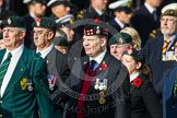 Remembrance Sunday at the Cenotaph in London 2014: Group D10 - Ulster Defence Regiment. Press stand opposite the Foreign Office building, Whitehall, London SW1, London, Greater London, United Kingdom, on 09 November 2014 at 11:44, image #344