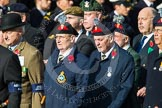 Remembrance Sunday at the Cenotaph in London 2014: Group D12 - North Irish Horse & Irish Regiments Old Comrades Association. Press stand opposite the Foreign Office building, Whitehall, London SW1, London, Greater London, United Kingdom, on 09 November 2014 at 11:44, image #355