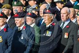 Remembrance Sunday at the Cenotaph in London 2014: Group D12 - North Irish Horse & Irish Regiments Old Comrades Association. Press stand opposite the Foreign Office building, Whitehall, London SW1, London, Greater London, United Kingdom, on 09 November 2014 at 11:44, image #356