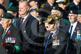 Remembrance Sunday at the Cenotaph in London 2014: Group D12 - North Irish Horse & Irish Regiments Old Comrades Association. Press stand opposite the Foreign Office building, Whitehall, London SW1, London, Greater London, United Kingdom, on 09 November 2014 at 11:45, image #358