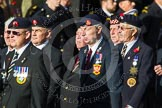 Remembrance Sunday at the Cenotaph in London 2014: Group D13 - Northern Ireland Veterans' Association. Press stand opposite the Foreign Office building, Whitehall, London SW1, London, Greater London, United Kingdom, on 09 November 2014 at 11:45, image #369