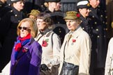 Remembrance Sunday at the Cenotaph in London 2014: Group D21 - First Aid Nursing Yeomanry (Princess Royal's Volunteers Corps). Press stand opposite the Foreign Office building, Whitehall, London SW1, London, Greater London, United Kingdom, on 09 November 2014 at 11:46, image #411