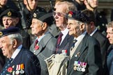 Remembrance Sunday at the Cenotaph in London 2014: Group D22 - Association of Jewish Ex-Servicemen & Women. Press stand opposite the Foreign Office building, Whitehall, London SW1, London, Greater London, United Kingdom, on 09 November 2014 at 11:46, image #423