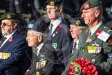 Remembrance Sunday at the Cenotaph in London 2014: Group D29 - Bond Van Wapenbroeders. Press stand opposite the Foreign Office building, Whitehall, London SW1, London, Greater London, United Kingdom, on 09 November 2014 at 11:48, image #512