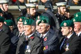 Remembrance Sunday at the Cenotaph in London 2014: Group E1 - Royal Marines Association. Press stand opposite the Foreign Office building, Whitehall, London SW1, London, Greater London, United Kingdom, on 09 November 2014 at 11:49, image #533