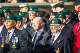 Remembrance Sunday at the Cenotaph in London 2014: Group E1 - Royal Marines Association. Press stand opposite the Foreign Office building, Whitehall, London SW1, London, Greater London, United Kingdom, on 09 November 2014 at 11:49, image #541