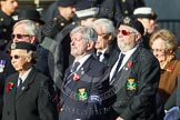Remembrance Sunday at the Cenotaph in London 2014: Group E2 - Royal Naval Association. Press stand opposite the Foreign Office building, Whitehall, London SW1, London, Greater London, United Kingdom, on 09 November 2014 at 11:49, image #556