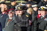 Remembrance Sunday at the Cenotaph in London 2014: Group E3 - Merchant Navy Association. Press stand opposite the Foreign Office building, Whitehall, London SW1, London, Greater London, United Kingdom, on 09 November 2014 at 11:50, image #593