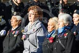 Remembrance Sunday at the Cenotaph in London 2014: Group E25 - Association of WRENS. Press stand opposite the Foreign Office building, Whitehall, London SW1, London, Greater London, United Kingdom, on 09 November 2014 at 11:53, image #763