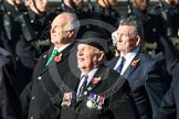 Remembrance Sunday at the Cenotaph in London 2014: Group E39 - Cloud Observers Association. Press stand opposite the Foreign Office building, Whitehall, London SW1, London, Greater London, United Kingdom, on 09 November 2014 at 11:54, image #870
