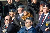 Remembrance Sunday at the Cenotaph in London 2014: Group F15 - National Gulf Veterans & Families Association. Press stand opposite the Foreign Office building, Whitehall, London SW1, London, Greater London, United Kingdom, on 09 November 2014 at 11:58, image #1037