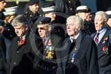 Remembrance Sunday at the Cenotaph in London 2014: Group F15 - National Gulf Veterans & Families Association. Press stand opposite the Foreign Office building, Whitehall, London SW1, London, Greater London, United Kingdom, on 09 November 2014 at 11:58, image #1050
