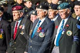 Remembrance Sunday at the Cenotaph in London 2014: Group F17 - Suez Veterans Association. Press stand opposite the Foreign Office building, Whitehall, London SW1, London, Greater London, United Kingdom, on 09 November 2014 at 11:58, image #1059