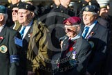 Remembrance Sunday at the Cenotaph in London 2014: Group F17 - Suez Veterans Association. Press stand opposite the Foreign Office building, Whitehall, London SW1, London, Greater London, United Kingdom, on 09 November 2014 at 11:58, image #1062