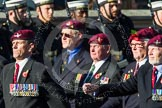 Remembrance Sunday at the Cenotaph in London 2014: Group A10 - Parachute Regimental Association. Press stand opposite the Foreign Office building, Whitehall, London SW1, London, Greater London, United Kingdom, on 09 November 2014 at 12:01, image #1214
