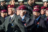 Remembrance Sunday at the Cenotaph in London 2014: Group A10 - Parachute Regimental Association. Press stand opposite the Foreign Office building, Whitehall, London SW1, London, Greater London, United Kingdom, on 09 November 2014 at 12:01, image #1226