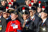 Remembrance Sunday at the Cenotaph in London 2014: Group A27 - Royal Northumberland Fusiliers. Press stand opposite the Foreign Office building, Whitehall, London SW1, London, Greater London, United Kingdom, on 09 November 2014 at 12:04, image #1386