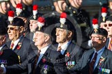 Remembrance Sunday at the Cenotaph in London 2014: Group A27 - Royal Northumberland Fusiliers. Press stand opposite the Foreign Office building, Whitehall, London SW1, London, Greater London, United Kingdom, on 09 November 2014 at 12:04, image #1387