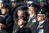 Remembrance Sunday at the Cenotaph in London 2014: Group B6 - 3rd Regiment Royal Horse Artillery Association. Press stand opposite the Foreign Office building, Whitehall, London SW1, London, Greater London, United Kingdom, on 09 November 2014 at 12:07, image #1543