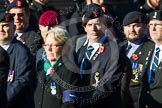 Remembrance Sunday at the Cenotaph in London 2014: Group B11 - Royal Signals Association. Press stand opposite the Foreign Office building, Whitehall, London SW1, London, Greater London, United Kingdom, on 09 November 2014 at 12:08, image #1611
