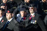 Remembrance Sunday at the Cenotaph in London 2014: Group B11 - Royal Signals Association. Press stand opposite the Foreign Office building, Whitehall, London SW1, London, Greater London, United Kingdom, on 09 November 2014 at 12:08, image #1619