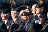 Remembrance Sunday at the Cenotaph in London 2014: Group B19 - Royal Electrical & Mechanical Engineers Association. Press stand opposite the Foreign Office building, Whitehall, London SW1, London, Greater London, United Kingdom, on 09 November 2014 at 12:10, image #1722